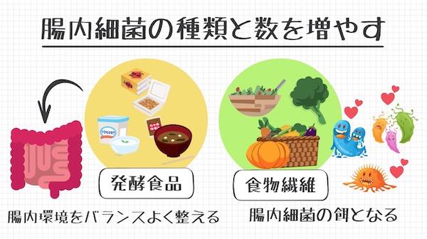 発酵食品と食物繊維