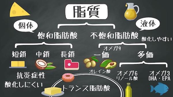 飽和脂肪酸・不飽和脂肪酸